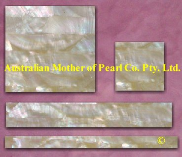 Gold Mother of Pearl strip tiles