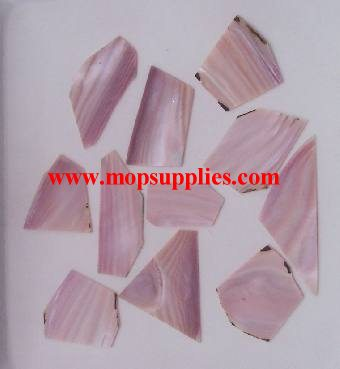 Pink Mussel blanks